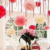 Cowboycool Set of 5 Tissue Pom Poms Hanging Paper Flower Balls Blossom for Wedding Party Bridal Shower Nursery Decoration