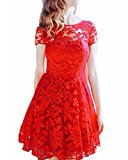 ZANZEA Women's Sexy Casual Summer Lace Round Neck Short Sleeve Princess Dress Party Ball Gown Red US 4