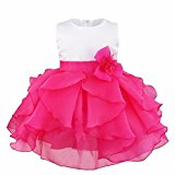 iEFiEL Baby Girls Kids Organza Flower Formal Wedding Birthday Party Bridesmaid Clothing Princess Dress Rose 12-18 Months