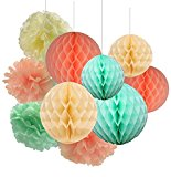 Furuix Mint Green Peach Cream TIssue Paper Honeycomb Balls Tissue Paper Pom Pom Paper Decorations Hanging for Baby Shower Bridal Shower Birthday Decor Wedding Decor Party Decor Wall Hanging Decoration Mint Green Decor