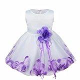 iEFiEL Girl Flower Petals Dress Formal Wedding Bridesmaid Party Christening Princess Dresses Dark Purple Baby 3-6 Months