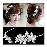 Calcifer® 1pcs Handmade Crystal Rhinestone+ Pearls Headdress Bridal Wedding hair accessories Headwear Headpiece Head Flower (White)