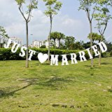 Zhangming JUST MARRIED Bunting Banner Wedding Party Decoration