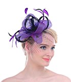 Wedding Bridal Looped Ribbon Net veil Feather Hair Clip Fascinator Kentucky Derby Cocktail Hat(Purple)