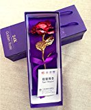 9.8-inches Gold Foil Rose - Best Valentine's Day Gifts - Handcrafted & Last Forever! Gift Box and Gift Card Included (Red)