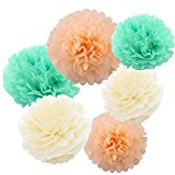 Tissue Paper Pom Poms, Set of 6 Peach Mint Cream Hanging Flower Poms for Ball Wedding Party Bridal Shower Nursery Decoration Handmade (Mixed Sizes: 10inch +14inch)