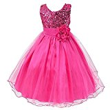 GSCH Baby Girl Sequins Camellia Flower Full Dress Bridesmaid Children's Formal Wedding Party Princess Tutu Dress (4T, Fuchsia)