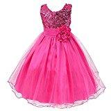 GSCH Baby Girl Sequins Camellia Flower Full Dress Bridesmaid Children's Formal Wedding Party Princess Tutu Dress (4T, Fuchsia)