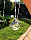 Sterling Silver Dandelion Angel Wings Charm Necklace Pendant Chain - Real Dandelion Wish & Flower Jewelry Sterling Silver 925 chain Angel Wing Fairy Leaf